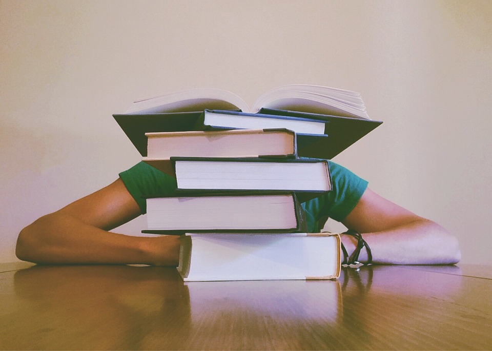 La bibliothèque, l'espace dédié à la concentration
